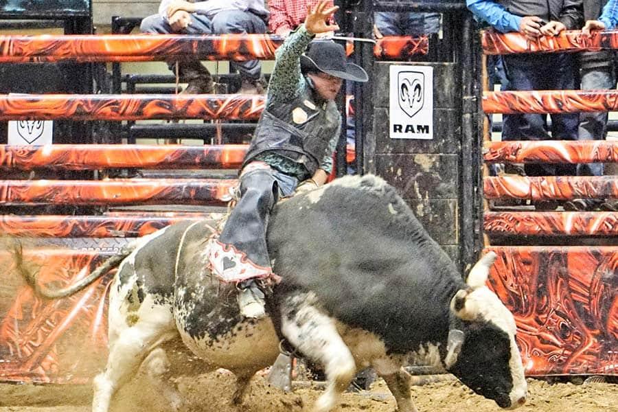 bull riding basics pcb tour